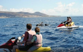 Fuerteventura not only rents out jet skis